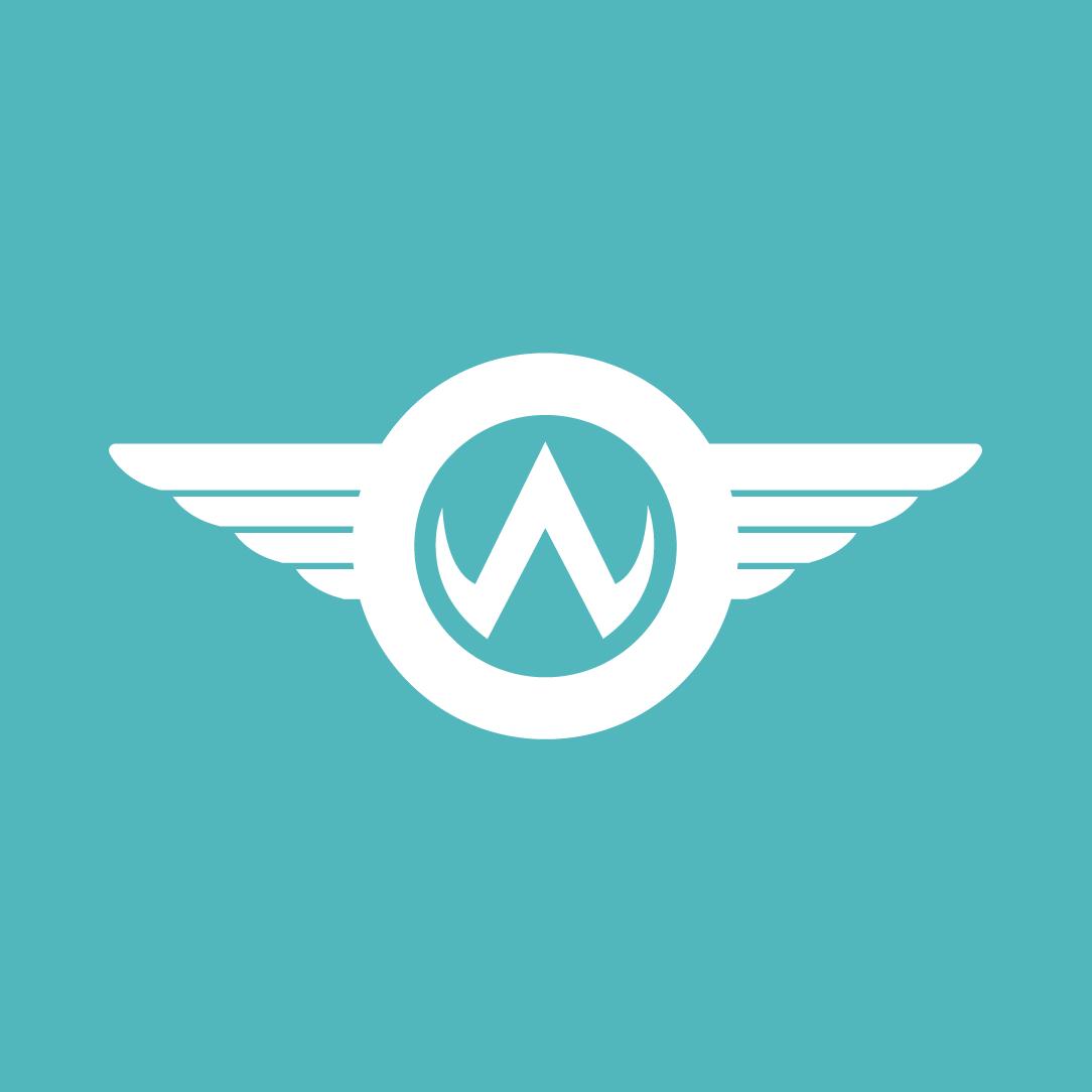Way We Do Integration API
